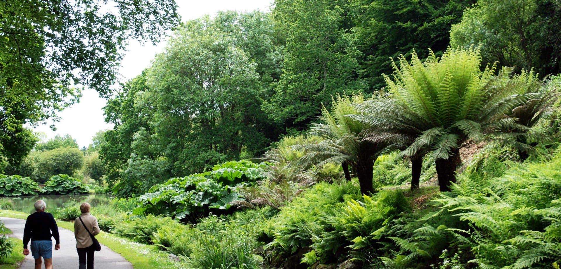 Le conservatoire botanique de Brest